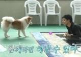 '나 혼자 산다' 성훈, 입양한 반려견과 일상 공개
