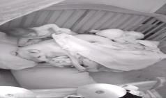 [해외소식]아기방 CCTV에 찍힌 핏불의 정체