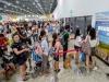 코로나19 바이러스 공포로 싱가포르 PetExpo 연기