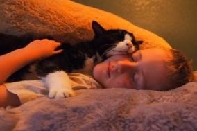 22살 고양이와 5살 소년의 아름다운 우정
