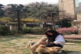 배우 최강희, 강아지들과 단란한 시간 공개