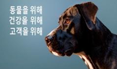 한국조에티스, 코로나19 대비 '슬기로운 반려동물 생활가이드' 발표