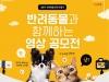 성동구, 반려동물과 함께하는 영상 공모전 개최