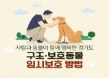 유기동물 임시보호, 온라인 지식(GSEEK)에서 교육받고 참여하자