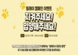 """반려동물 기업들 뜻 모아, """"유기동물 보호 캠페인"""" 진행"""