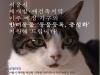 카라, 서울시 재개발 재건축지역 이주예정 반려가구 대상으로 '동물등록/중성화' 지원
