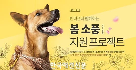 모나미펫, 반려견과 함께하는 '봄 소풍' 지원 프로젝트 신청자 모집