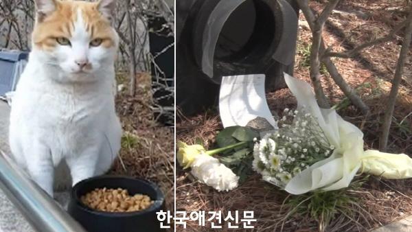 크기변환_국민대유자사망 (1).jpg