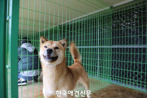 크기변환_벌교개농장 (4).jpg