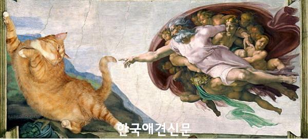 크기변환_신이 고양이를 만드신 방법.JPG