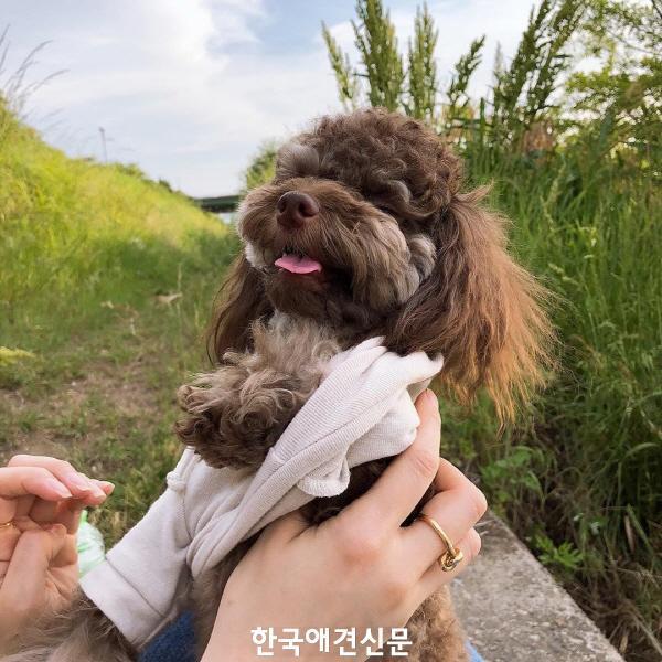 크기변환_윤은혜기쁨이 (1).jpg