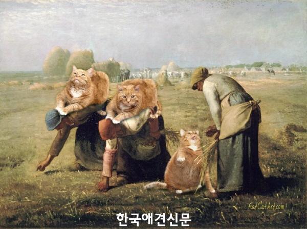 크기변환_이삭 줍는 사람들을 방해하는 냥이.jpg
