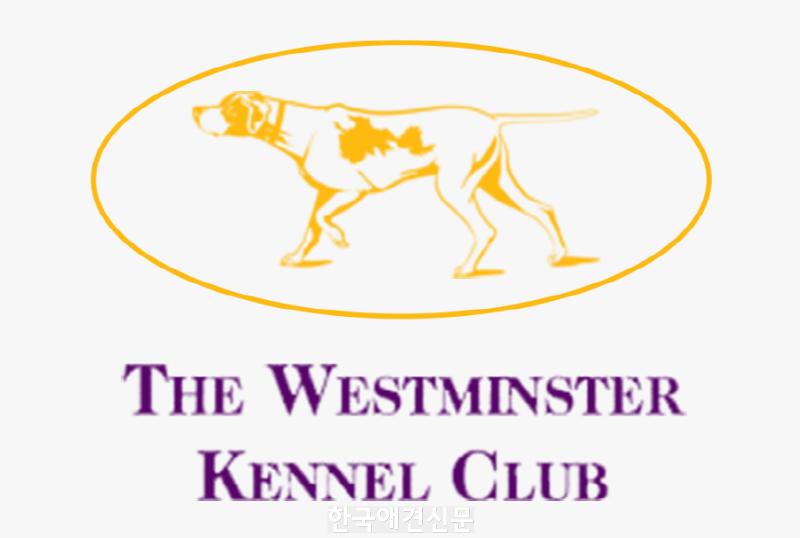 [크기변환]395-3950082_westminster-kennel-club-dog-show-hd-png-download.png