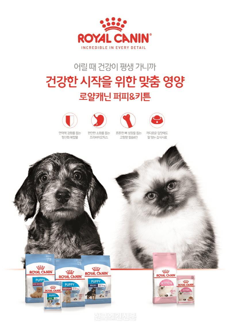 [크기변환][이미지] 로얄캐닌 건강한 시작 캠페인.jpg