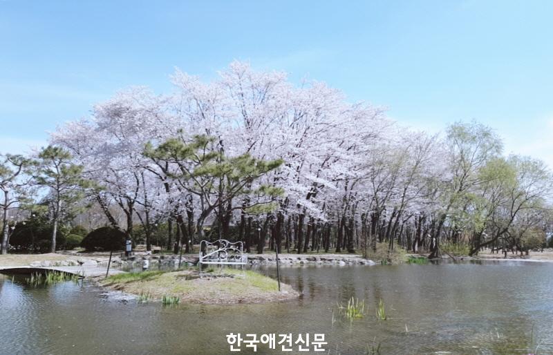 [크기변환]씨티평생교육원 전경사진.jpg