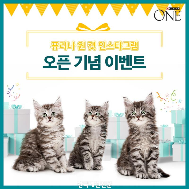 [크기변환]퓨리나 원 캣_오픈 이벤트(1).jpg