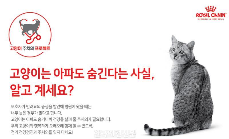 [크기변환][사진 1] 고양이 주치의 프로젝트.jpg