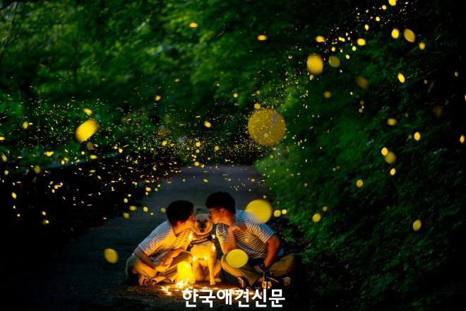 [크기변환]최우수상_사랑해 방구야.jpg